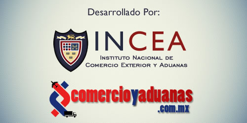 ceneval incea